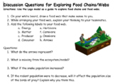 Discussion Questions for Modeling Ecology Unit Investigati