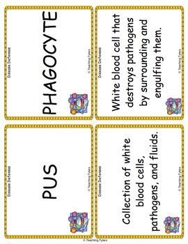 Disease Defenses Vocabulary Cards