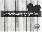 Disney Character Inspired Classroom Jobs