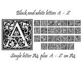 A4 display posters A - Z letters plus handouts - pretty fl