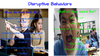 Disruptions in the Elementary Classroom