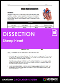 Dissection - Sheep Heart (HS-LS1.A)