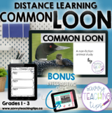Distance Learning Animal Research  the COMMON LOON