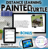 Distance Learning Animal Research  the PAINTED TURTLE