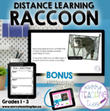 Distance Learning Animal Research  the RACCOON