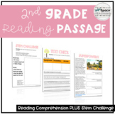 Distance Learning Comprehension Passage - Playground Design