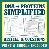 DNA and PROTEIN SYNTHESIS Informational Text and Worksheet