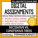 Distance Learning - Deciduous vs. Coniferous Trees Digital Assignments