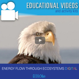 Distance Learning Energy Flow Through Ecosystems DIGITAL V