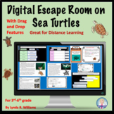Distance Learning Escape Room and Reading on Sea Turtles a