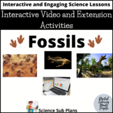 Fossils: Interactive Video and Activities- Distance Learning Google Classroom
