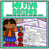 Distance Learning My Five Senses Kindergarten Differentiat