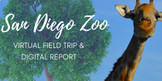 Distance Learning San Diego Zoo Virtual Field Trip and Rep