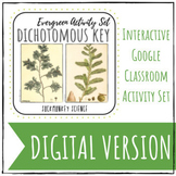 Distance Learning Science: Digital Dichotomous Key {Conife