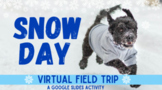 Distance Learning Snow Day Virtual Field Trip: Animals Playing in Snow