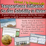 Distance Learning Virtual Lab: How Temperature Impacts Sol