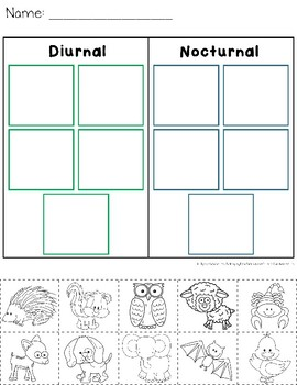 diurnal and nocturnal animals worksheets by catherine s. Black Bedroom Furniture Sets. Home Design Ideas