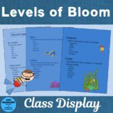 Dive Deeper with Bloom