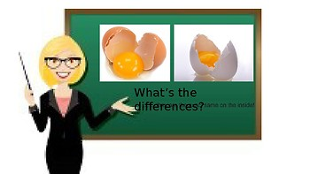 Life Skills (Intermediate Lesson): Diversity, Celebrating Differences