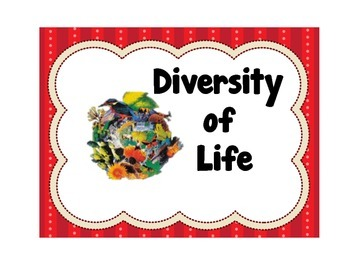 Diversity of Life Word Wall