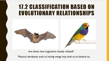 Diversity of life- Classifying Organisms- Good for ESE