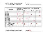 Divisibility Practice Worksheet