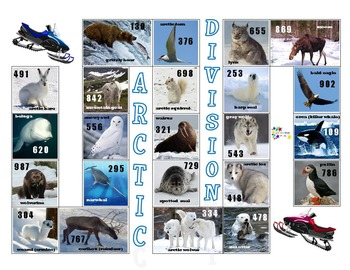 Division Safari & Arctic Division - 2 & 3 digit dividends