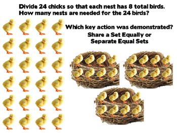 Division: Separate Equal Groups