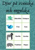 Djur på svenska och engelska