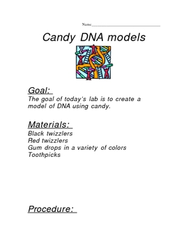 DNA candy model lab