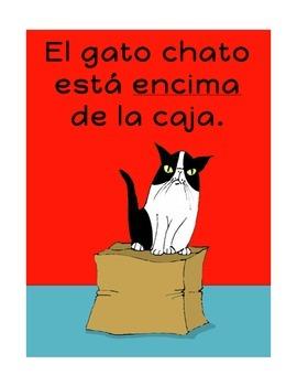 Spanish Prepositions: ¿Dónde está el gato chato?