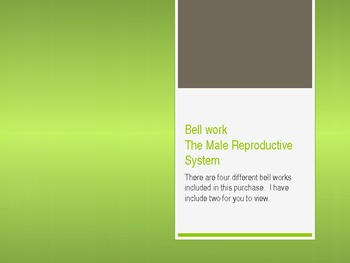 Do Now/Bellwork Male Reproductive System (4)