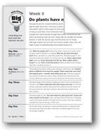 Do Plants Have Mouths?