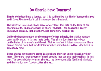 Do Sharks Have a Tongue?