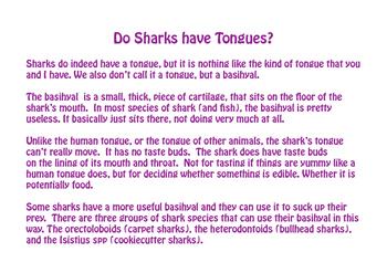 Do Sharks Have a Tongue?