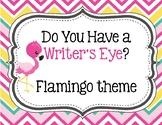 Do You Have a Writer's Eye? Flamingo theme