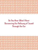 Do You Hear What I Hear: Discovering the Pathway of Sound