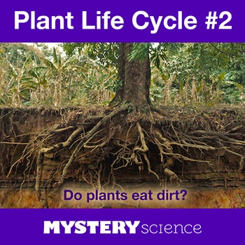 Plant Life Cycle NGSS:Roots&Minerals ❤ BUNDLE:Activity, Re