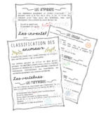 Document résumé - Classification des animaux