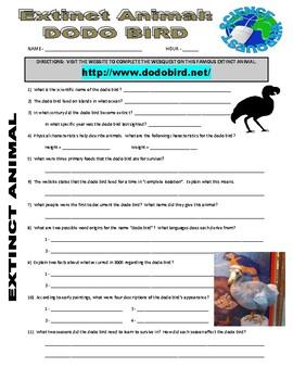 Dodo Bird : Extinct Animal Webquest