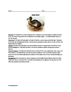 Dodo Bird - Extinct Review Article Questions Vocabulary Word Search