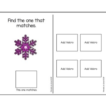 Does It Match?  (An Adapted Book Winter Themed Book)