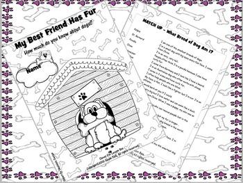 Dog Facts - Fun Worksheets
