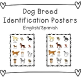 Dog Breed Identification Poster