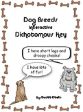 Dog Breeds Interactive Identification Game - Dichotomous Key PowerPoint