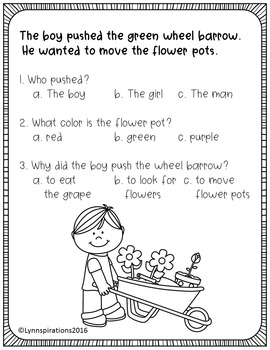 ESL Newcomer: Just for Fun!- Reading Comprehension Passages K-3