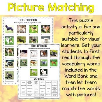 Dog Breeds Vocabulary Matching Puzzles