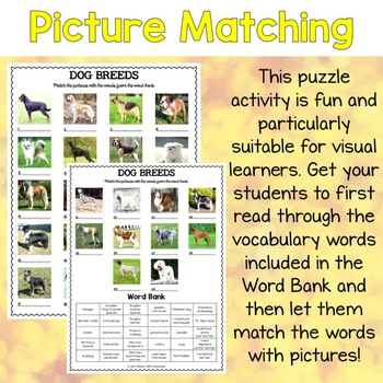 Dog Breeds ESL Activities Picture and Definition Matching Puzzles