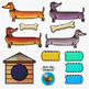 Dog Clip Art: Dachshund Dog