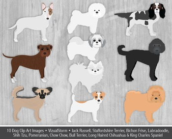 Dog Clip Art - 10 Hand Drawn Toy Dogs and Terriers - Cute Pet Illustration Set